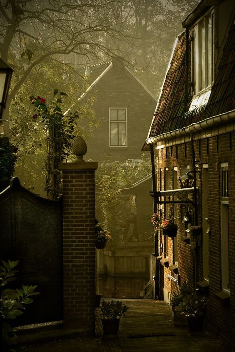 Dusk, Loenen, the Netherlands