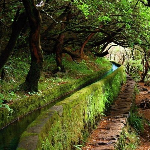 Ancient Canal,  Madeira, Portugal