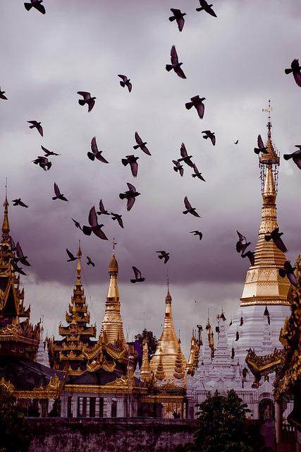 Pigeons above Golden Pagodas, Bago, Myanmar