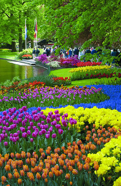 The colours of Keukenhof Gardens, Lisse, Netherlands