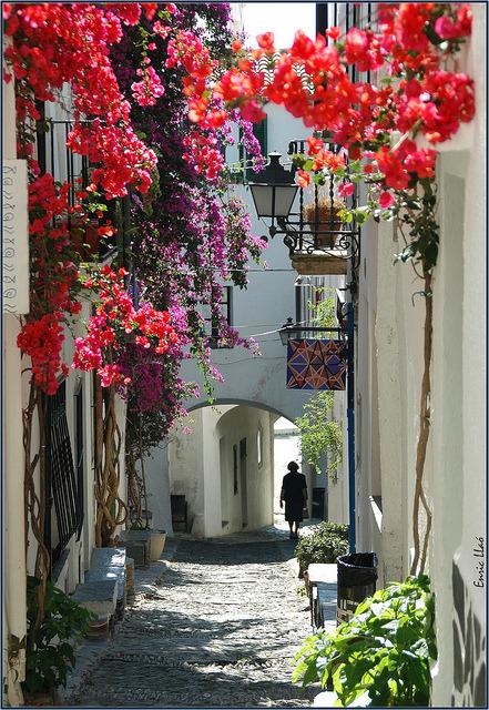 Flowered Passage, Catalonia, Spain