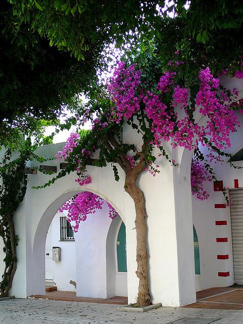 Mediterranean charm in Torremolinos, Andalusia, Spain