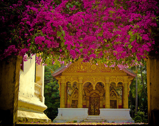 Floral entrance to Buddhist Wat, Luang Prabang, Laos