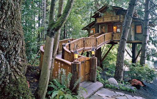 Inhabited Treehouse, Olympic Peninsula, Washington