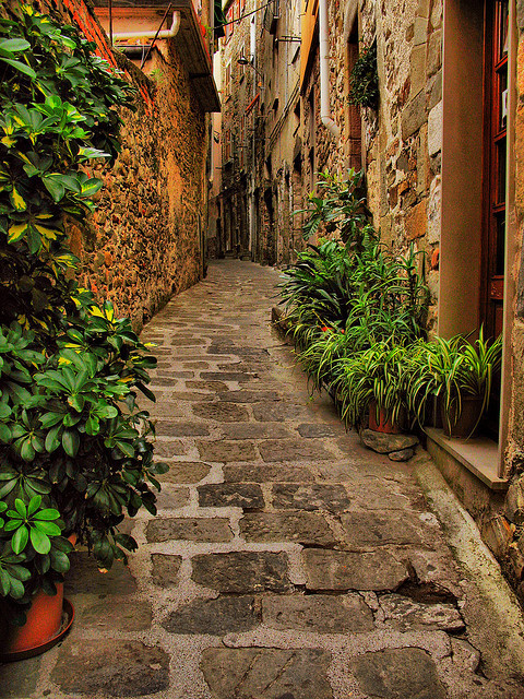 Narrow Street, Liguria, Italy