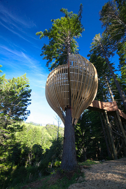 The Yellow Treehouse Restaurant near Auckland, New Zealand