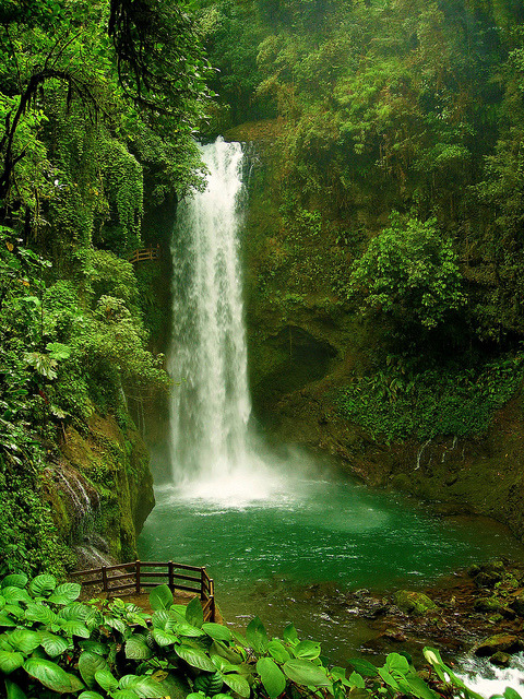 La Paz Waterfall, hidden in the rainforest of Costa Rica