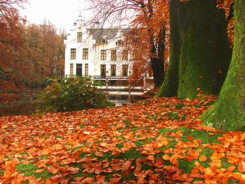 Autumn House, Staverden, Netherlands