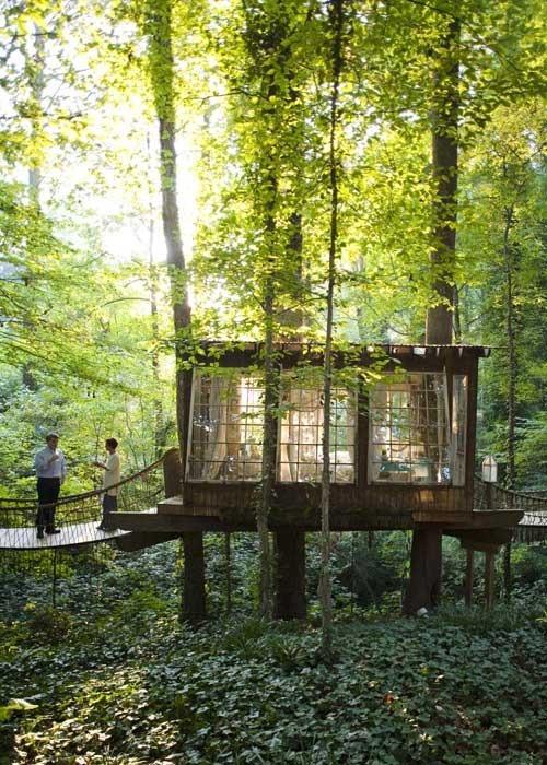 Tree House Restaurant, Decatur, Georgia