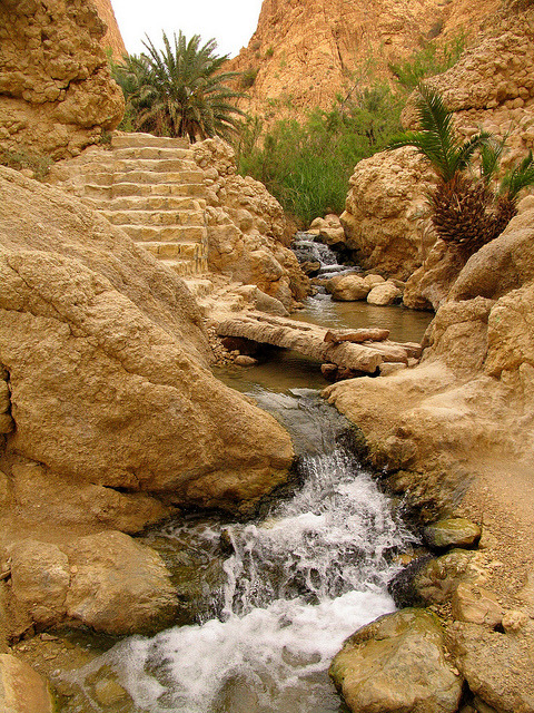 Mountain oasis of Chebika in western Tunisia