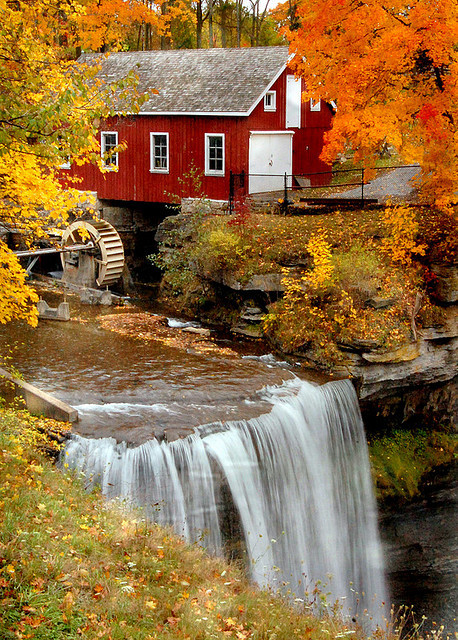 Autumn, Morningstar Mill, South Carolina