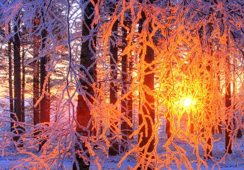 Frozen Sunset, Olulu, Finland