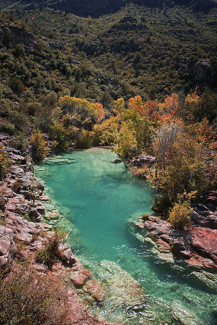 Fall colors at Fossil Creek, central Arizona, USA