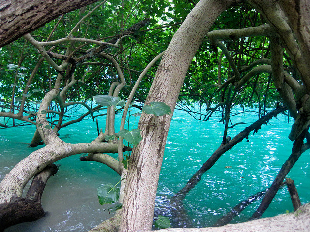 The Blue Lagoon near Port Antonio, Jamaica