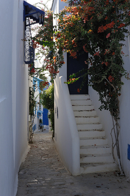Beautiful narrow street in Sidi Bou Said, Tunisia