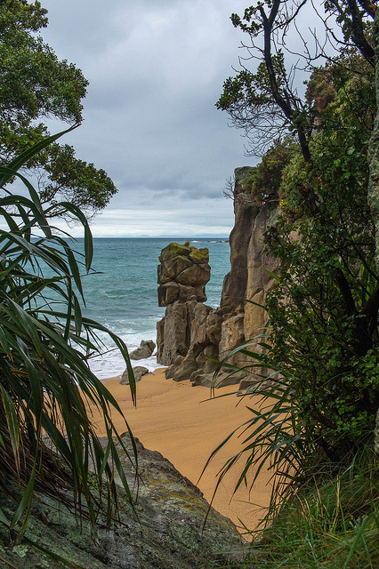 Hidden beach on Abel Tasman National Park, New Zealand