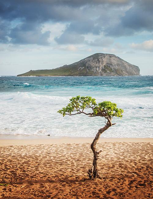 Waimanalo, Hawaii