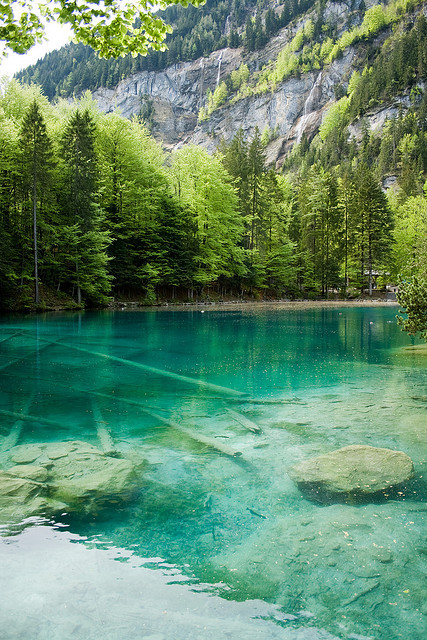 Blausee  in Kander Valley / Switzerland